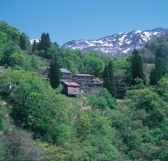 小谷温泉の全景
