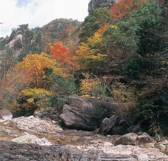 紅葉の石ヶ谷峡